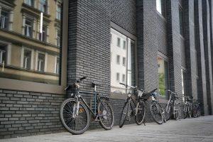 Klinker / Klinkerfassade reinigen Mannheim Heidelberg
